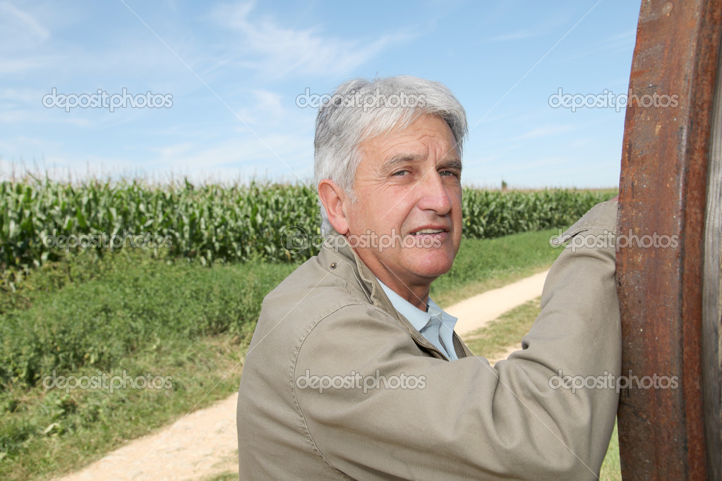 Agronomist in front of corn field