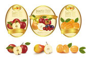 Fényképek arany feliratokat, különböző fajta gyümölcsöt. vektor