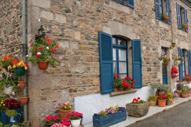 Traditional decorative flowers in Normandy, France