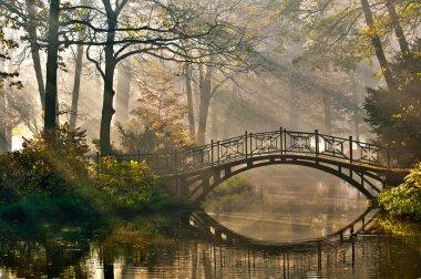 Old bridge in autumn misty park. stock vector