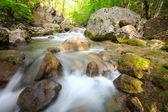 il fiume di montagna nella gola con una molla