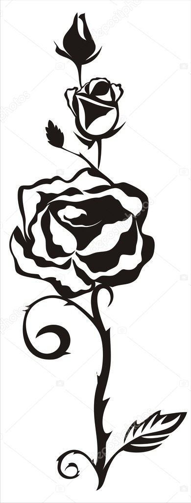Vector ornament with black decorative rose flower