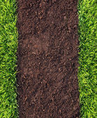 Photo Healthy grass and soil pattern