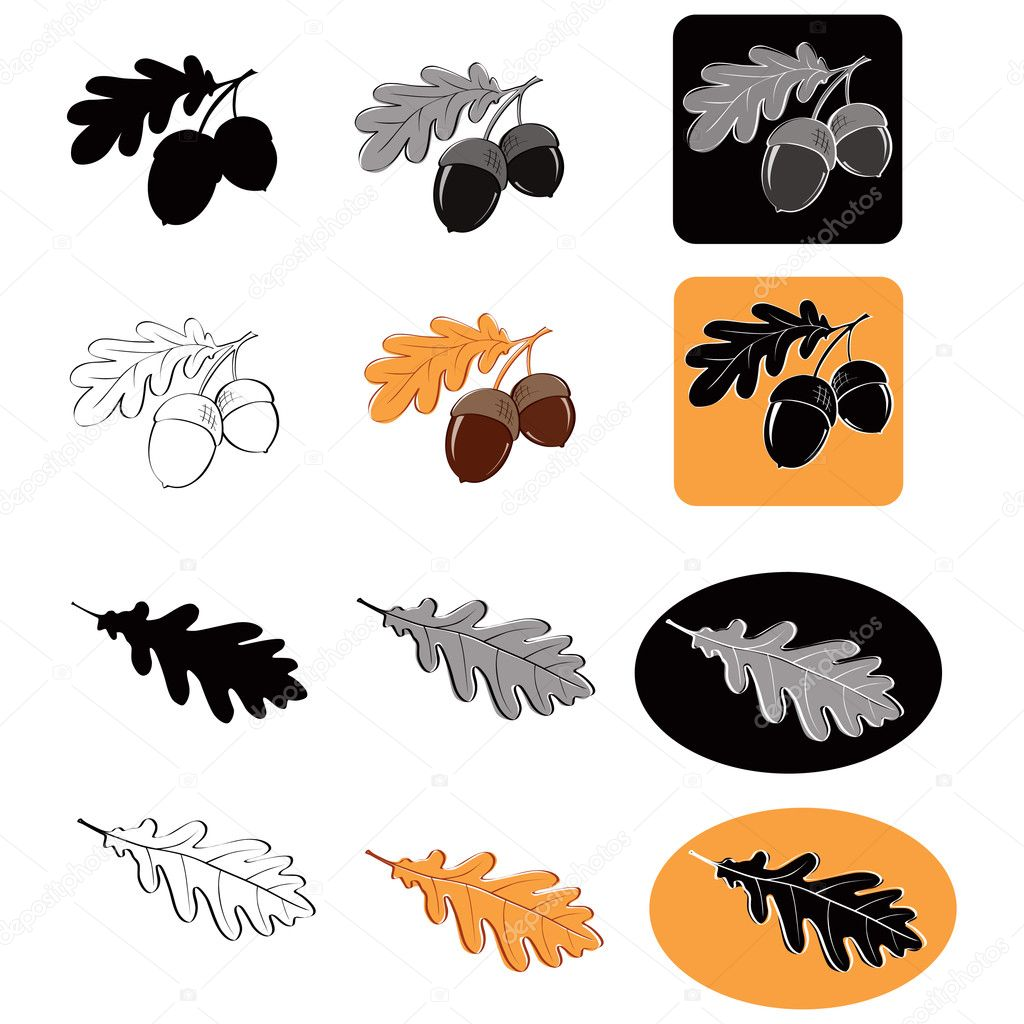 Hand drawn acorns and oak leaves in various styles (vector) stock vector