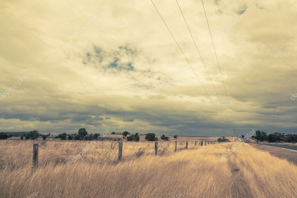 Outback Landscape with dramatic sky and yellow dry grass