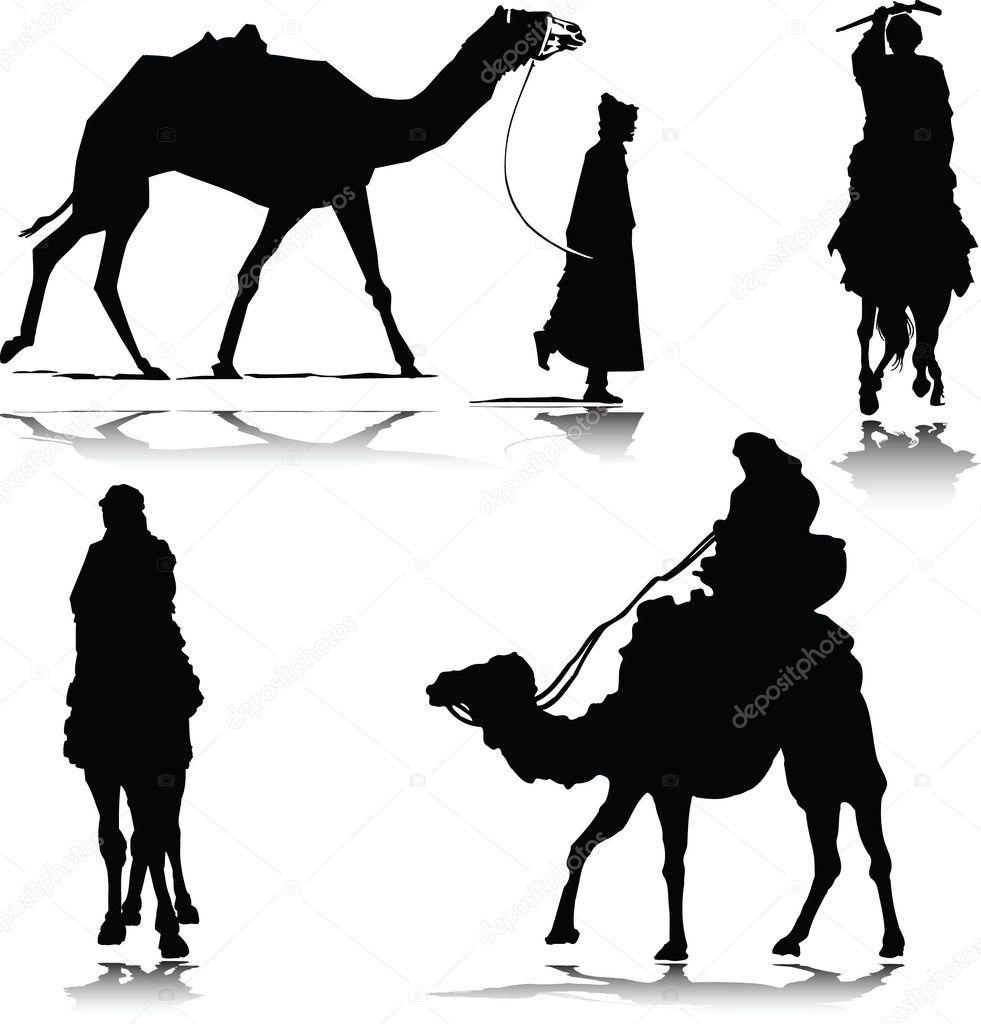 camel in action silhouettes u2014 stock photo drgaga 6367645
