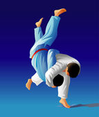 Photo Judo fighters