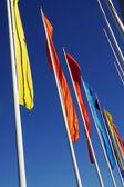 Fotografie Colorful flags