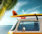 Fotografia Palm Van