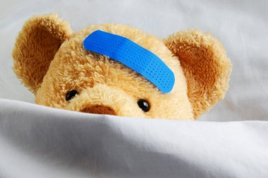 Teddy in Bed