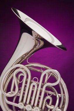 Double French Horn Isolated on Purple