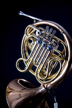Gold Brass French Horn Isolated On black