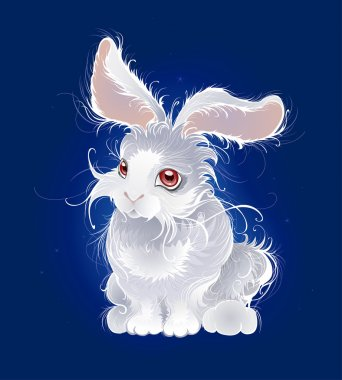 Magic white rabbit