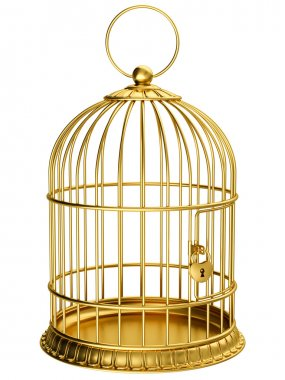 Gold cage isolated on white stock vector