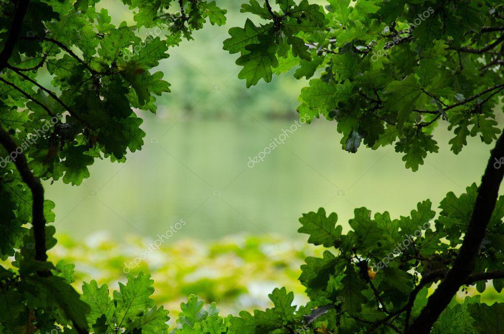 Natural frame nature background — Stock Photo © Arrxxx #6526879
