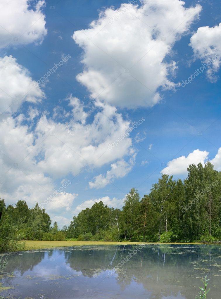 Pond with clouds on blue sky