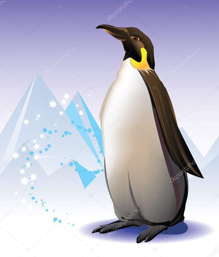 Penguin on the iceberg and snow background