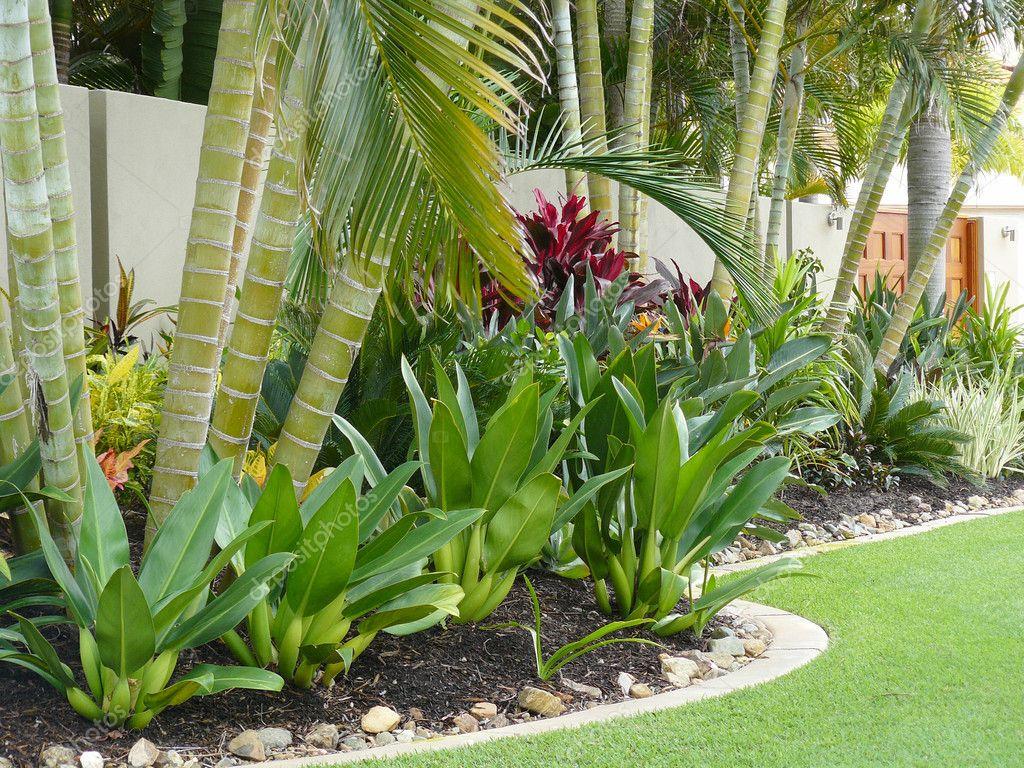 Tropical garden border stock photo scarfe 5949474 - Modele jardin japonais ...