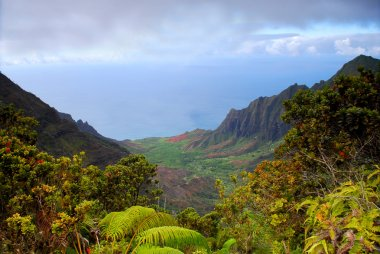 View of the rugged Na Pali coast of Kauai Hawaii stock vector