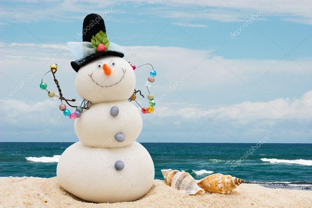 Winter Vacation