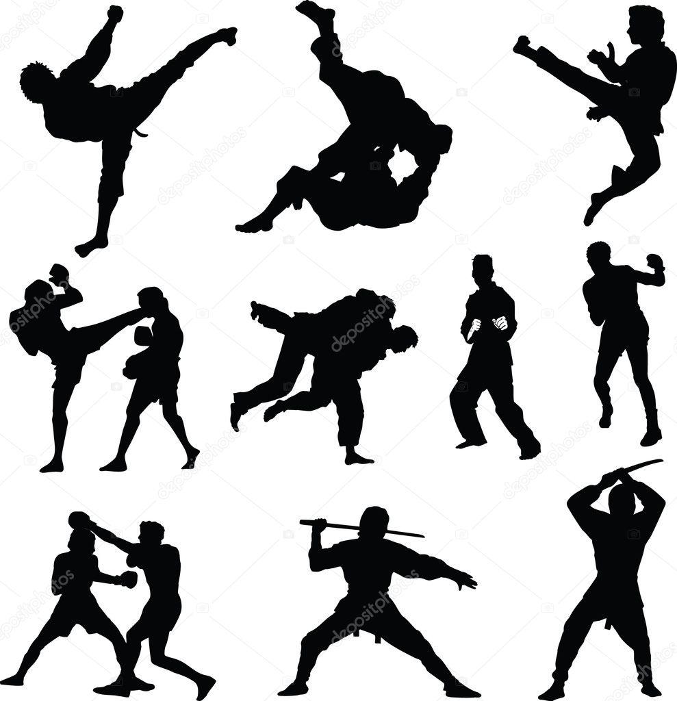"""Résultat de recherche d'images pour """"sports de combat"""""""