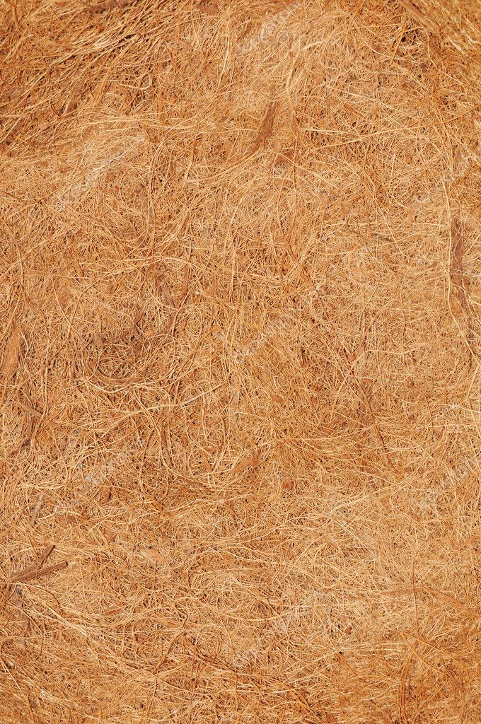 Coconut texture