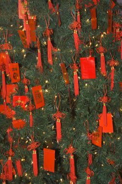 Chinese New Years Tree with Red Packets Beijing China