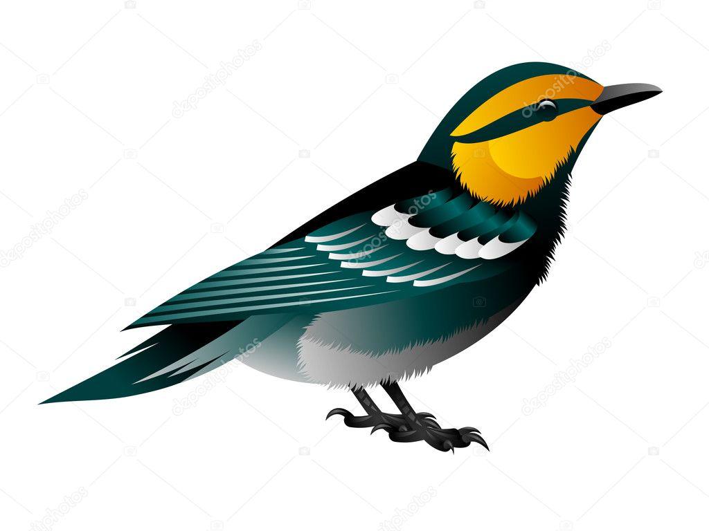 blue bird with yellow head stock vector scorpydesign 6323002