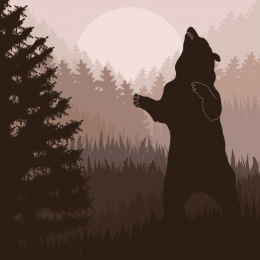Animated brown bear in wild night forest foliage illustration