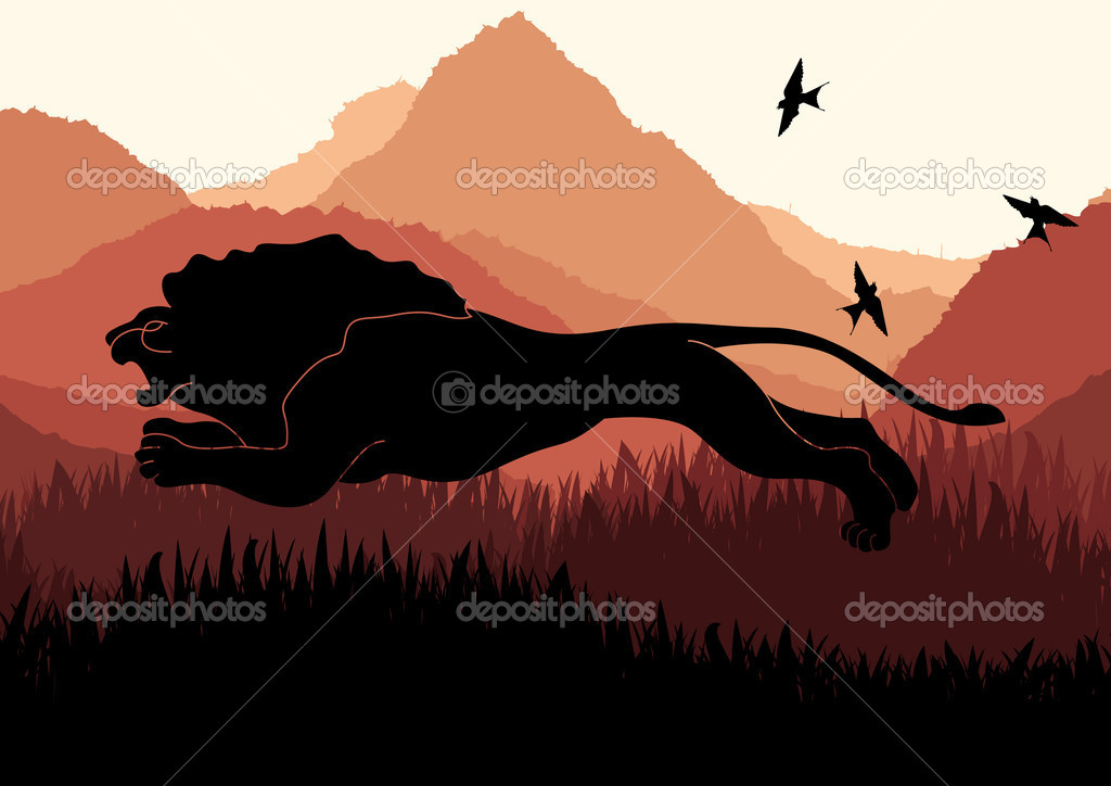 Lion in Africa vector