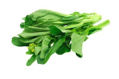 Fresh green mustard