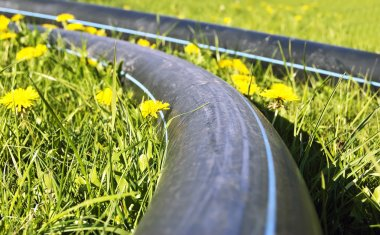 Construction pipes on the grass with dandelions