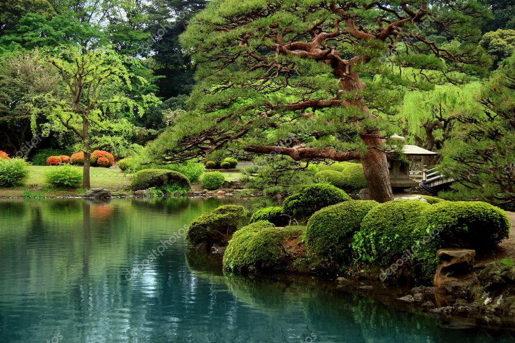 Calm zen lake