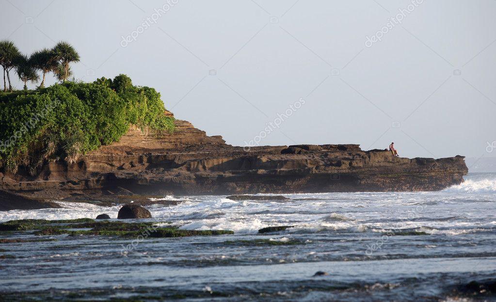 подробности о индийском океане таежные леса, красота