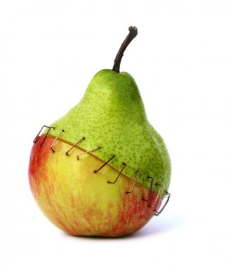 Piece of an apple and a pear stapled together