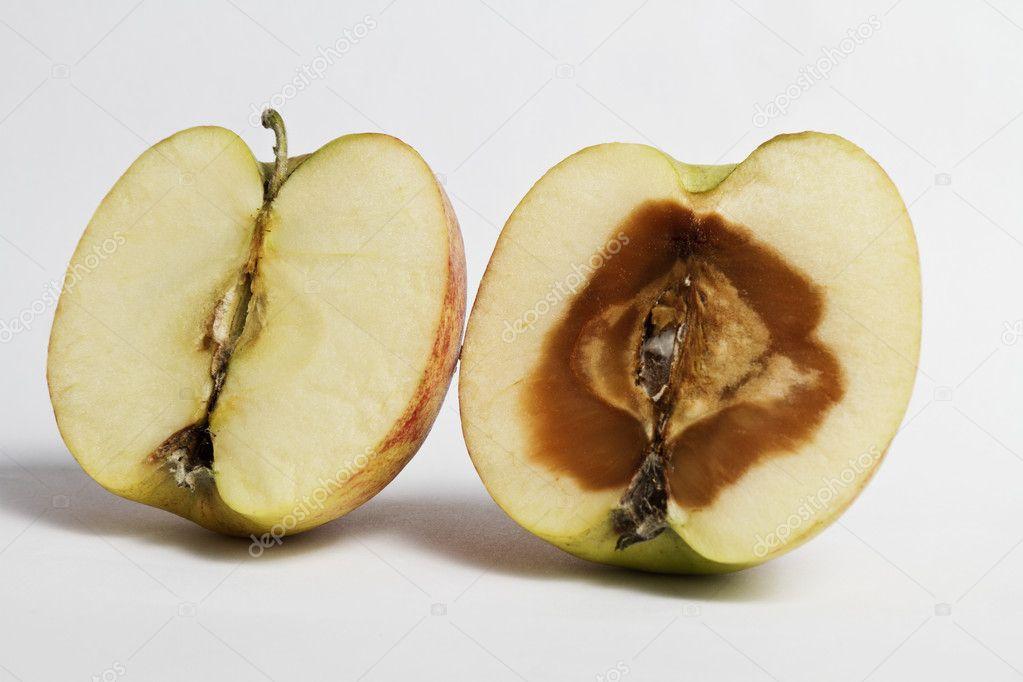 картинка гнилое яблоко внутри всем протяжении существования