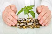 Ochrana dobrých investic a tvorby koncepce peníze