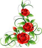 Fotografia Rose rosse