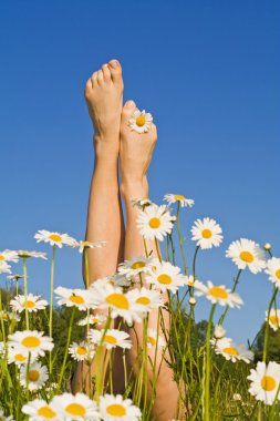 Woman legs with spring or summer flowers