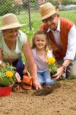 Prarodiče učit holčička způsoby zahradnictví