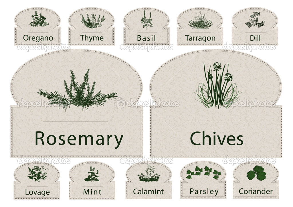 Labels Herbs paper spices