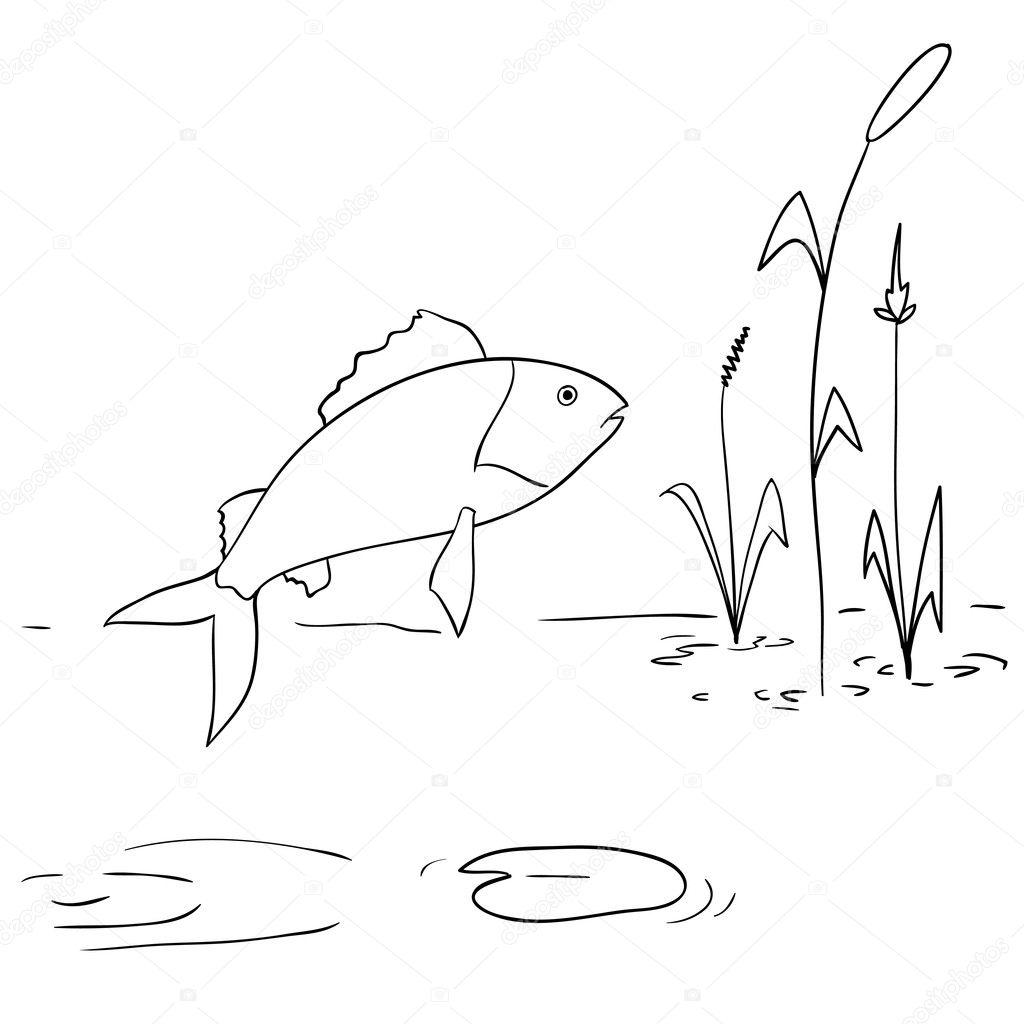 Dessin anim rivi re poissons sauter hors de l 39 eau image for Koi qui saute hors de l eau