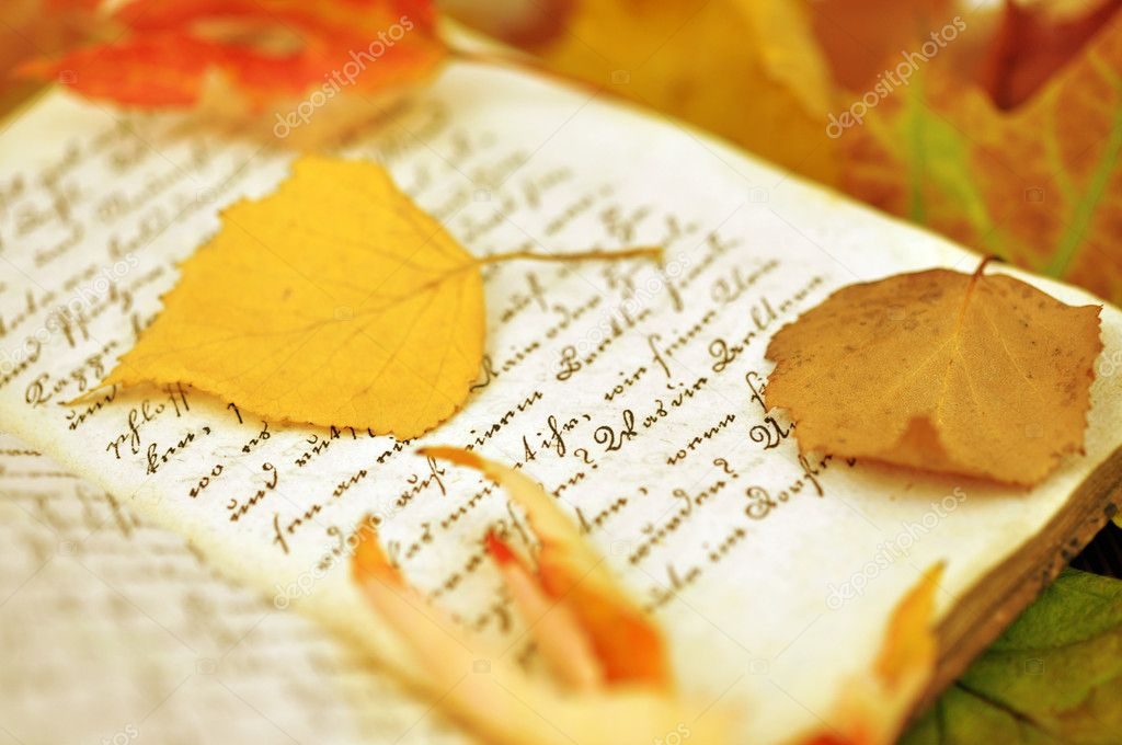 Fall Leaves on Diary