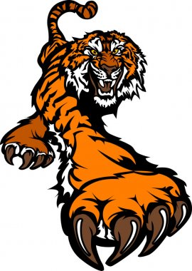 Tiger Body Prowling Graphic