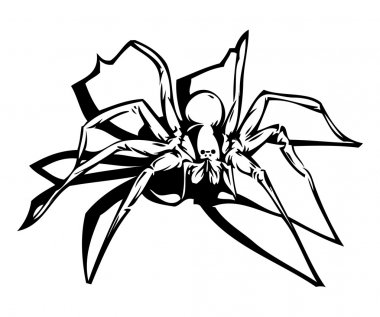 Spider (vector included)