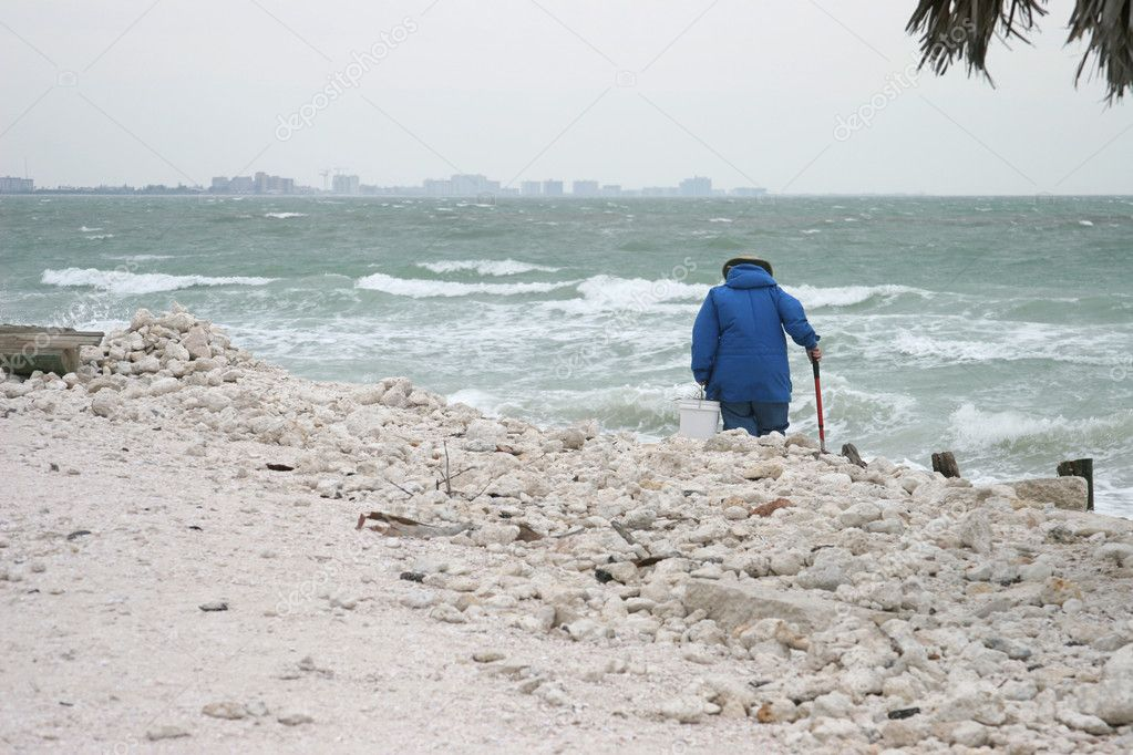 Dedicated Beachcomber