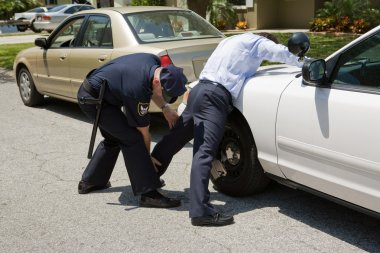 Police Pat Down