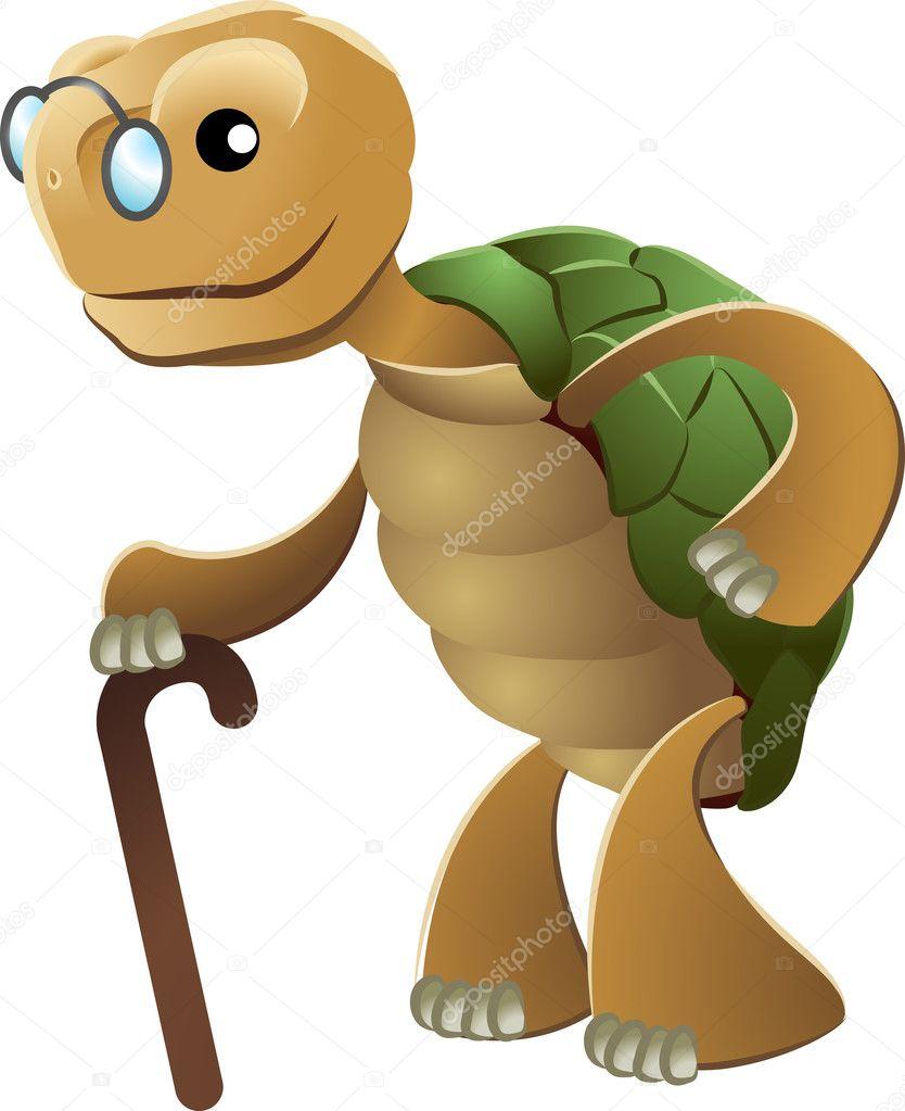 Yaşlı Kaplumbağa çizimi Stok Vektör Krisdog 6576877