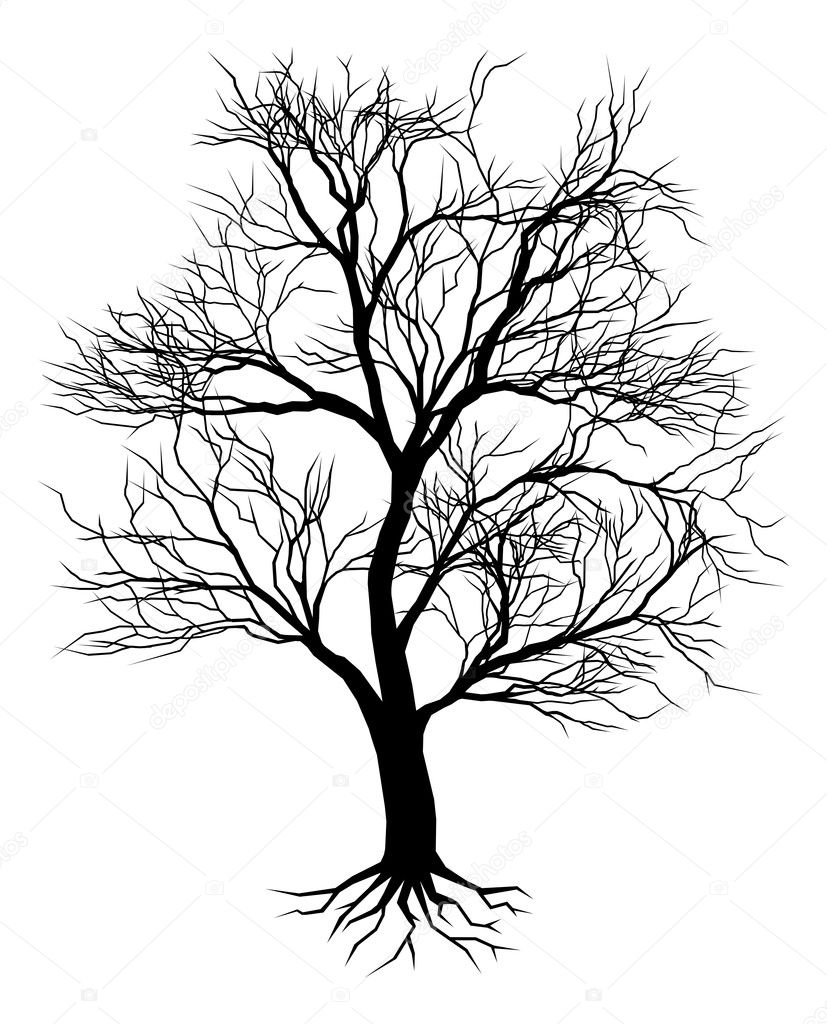 Hand drawn old tree silhouette