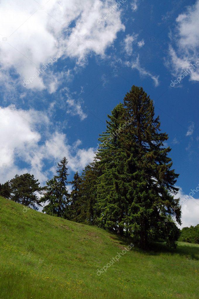 Spring landscape - Ottergrund Banska Stiavnica, Slovakia